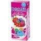 DM Yoghurt Drink - Mixed Berry